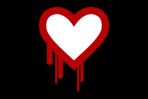 heart-bleed-bug-650x0